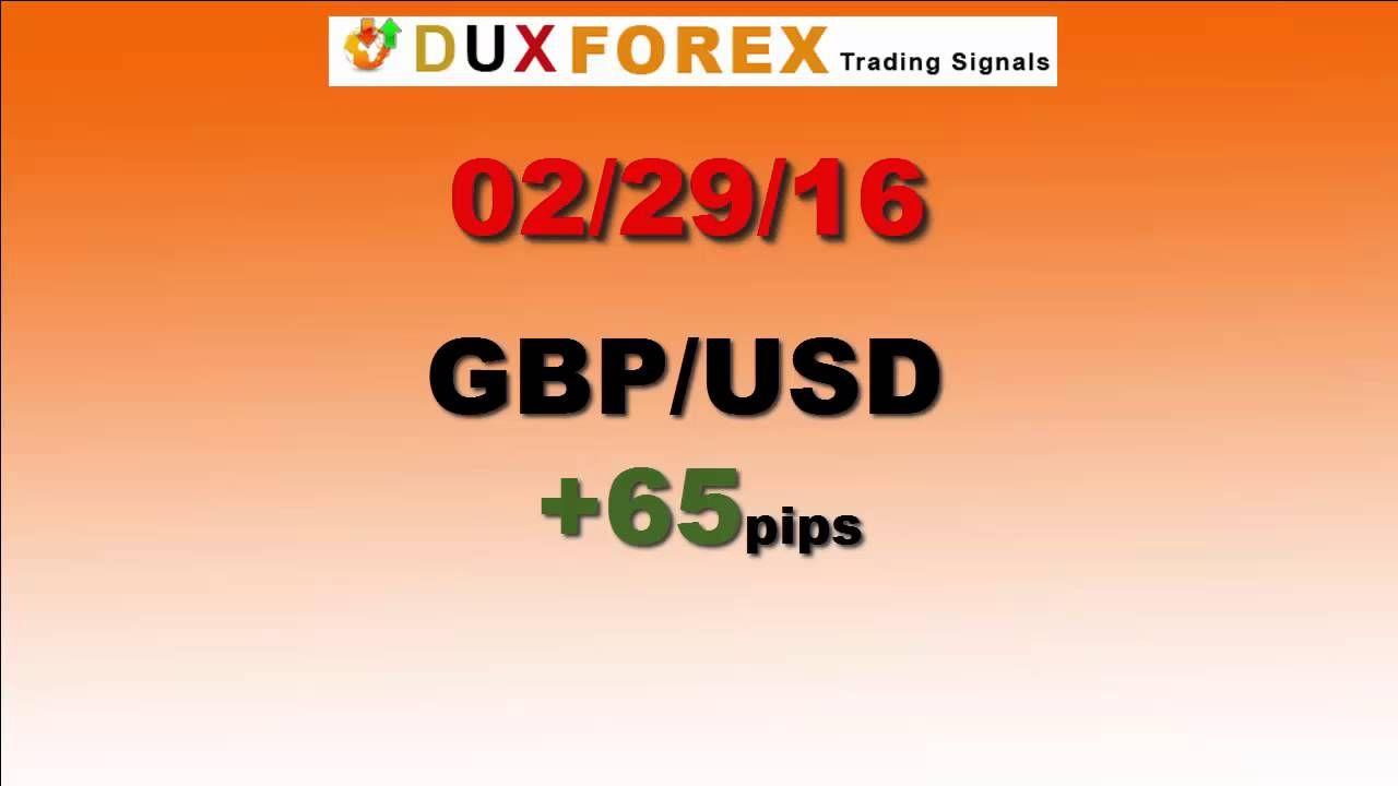 Daily Forex Profits Performance 02/29/16 Dux Forex