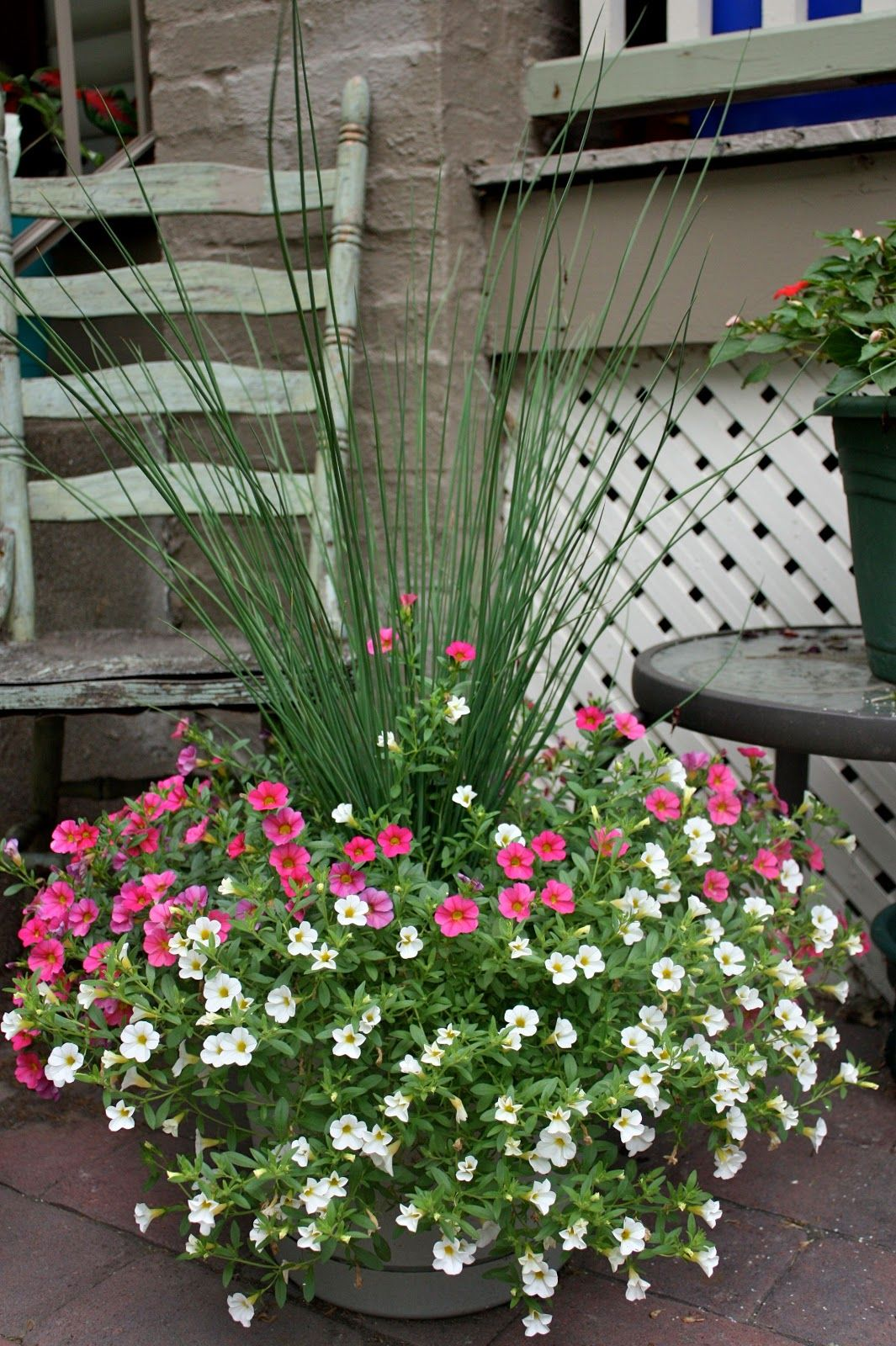 fd098cecb4bbb0d35d1a9f807731797a - What Is Zone 5b For Gardening