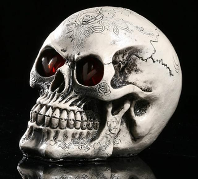 Skull Albuginea White Embryo Resin Model Medical Realistic Art - halloween club decorations