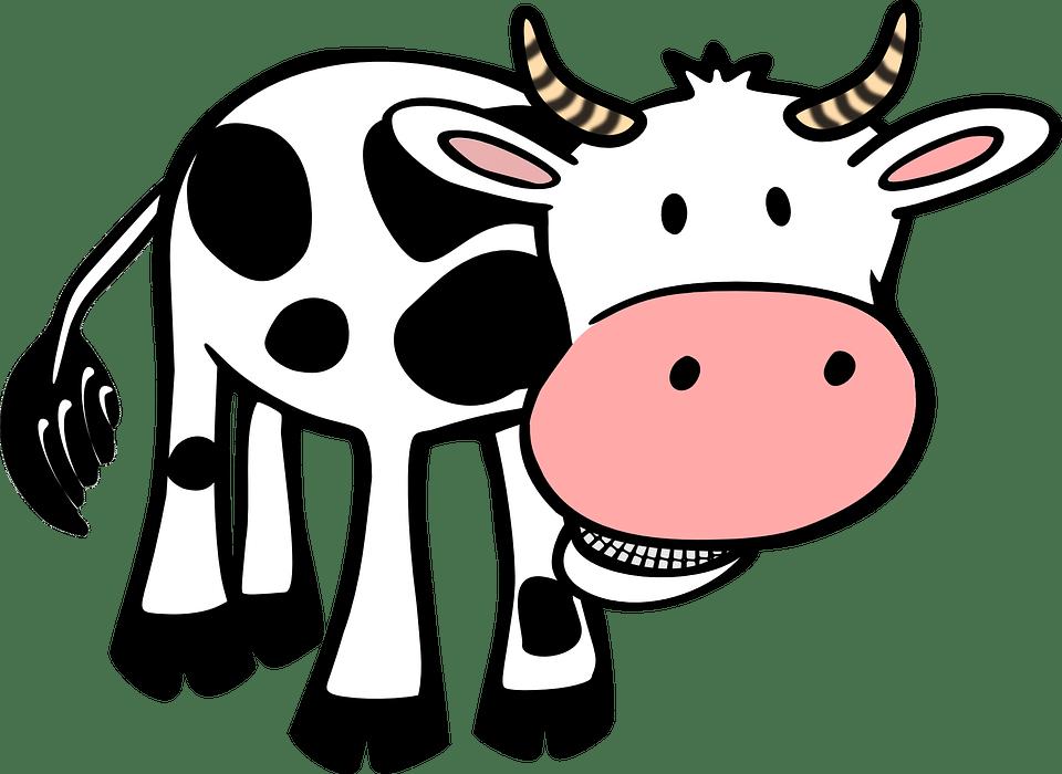 Les plats à base de boeuf Vache, Vache clipart, Dessin