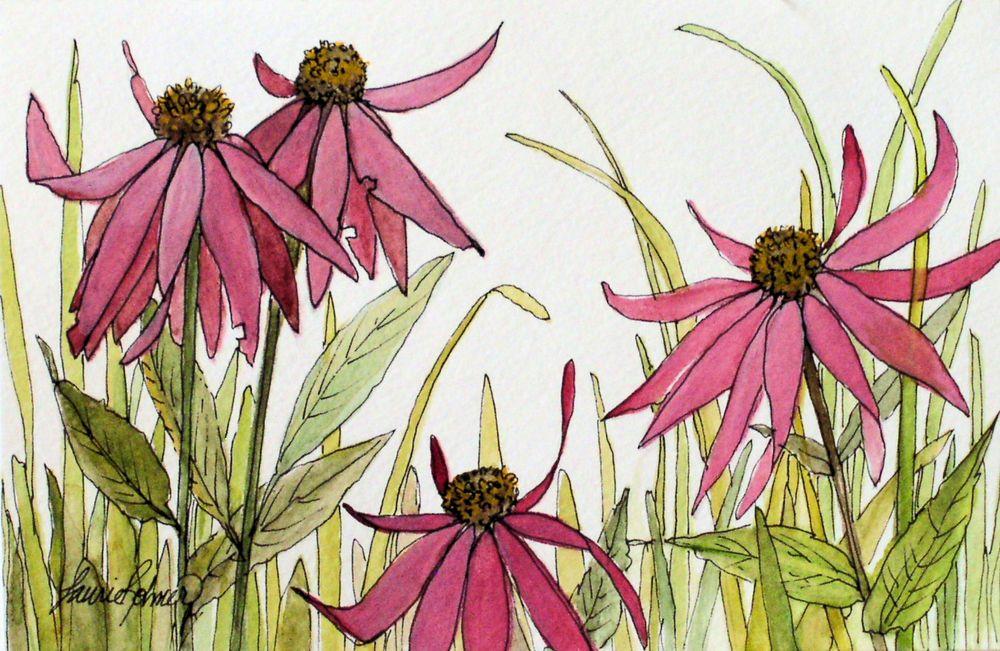 Flower Meaning Strength In 2020 Flower Illustration Watercolor Flower Art Flower Painting