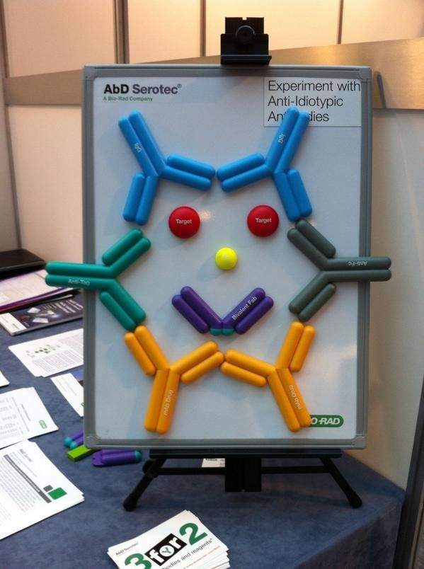 Happy Anti Idiotypic Antibody Magnets From AbD Serotec