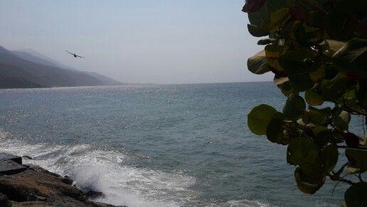 Naturaleza, mar, sonido del viento y del mar