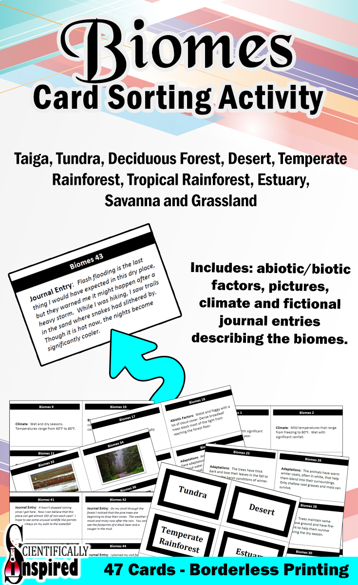 using biomes enrichment activity answer key