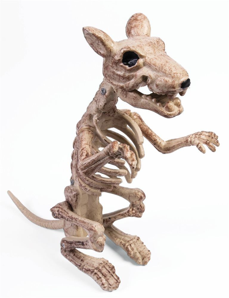 Sitting Rat Skeleton Prop Halloween Decorations 2018 Pinterest - halloween club decorations