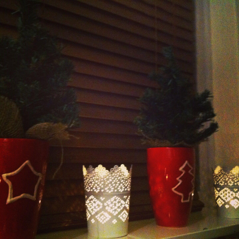 Little christmas trees