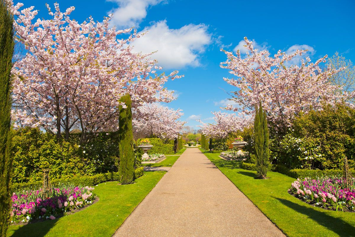 50 paisajes donde siempre deber a ser primavera ya - Paisajes y jardines ...