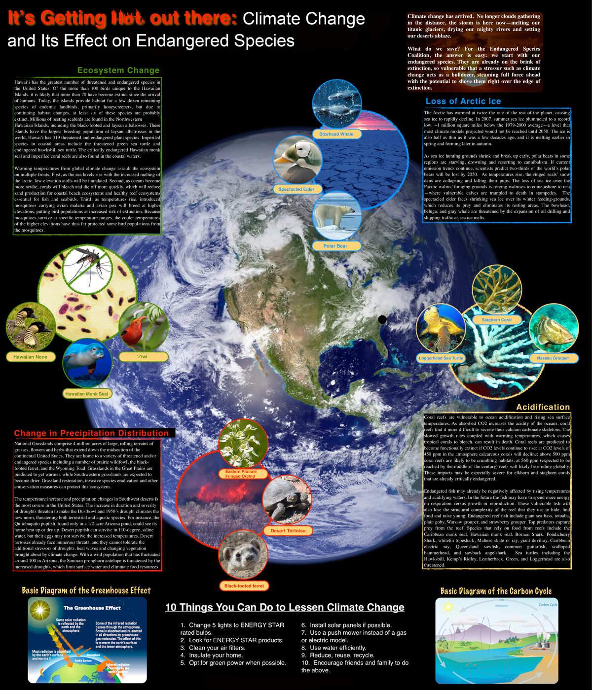 Pin By Marianne Maloy On Environmental Education
