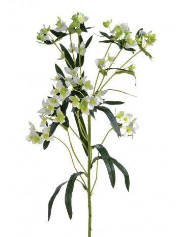 Artificial - Wax Flower Spray - Cream