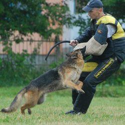 Schutzhund Training Equipment Schutzhund Bite Sleeves Schutzhund
