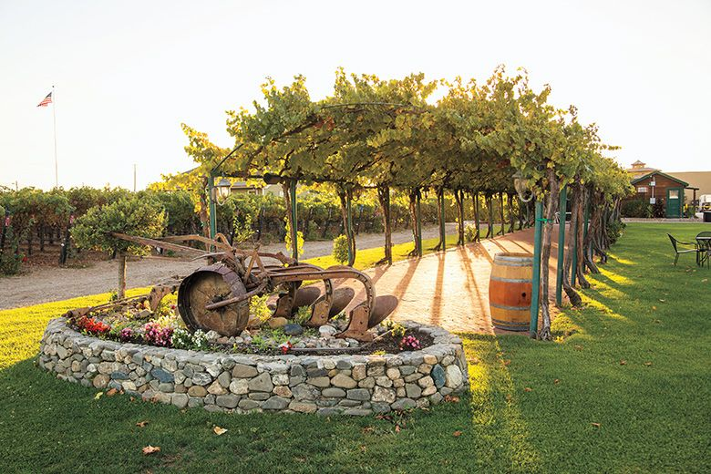 Explore Livermore Wine Country By Bike Car Or Trolley Here S How And Where To Sip Vino In The East Bay Edited By Casey Cantrell Wine Country Wine Pergola