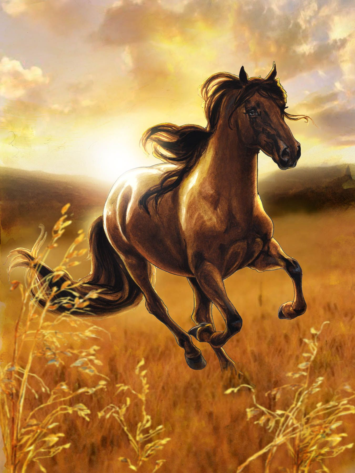 Bella Sara Magical horses