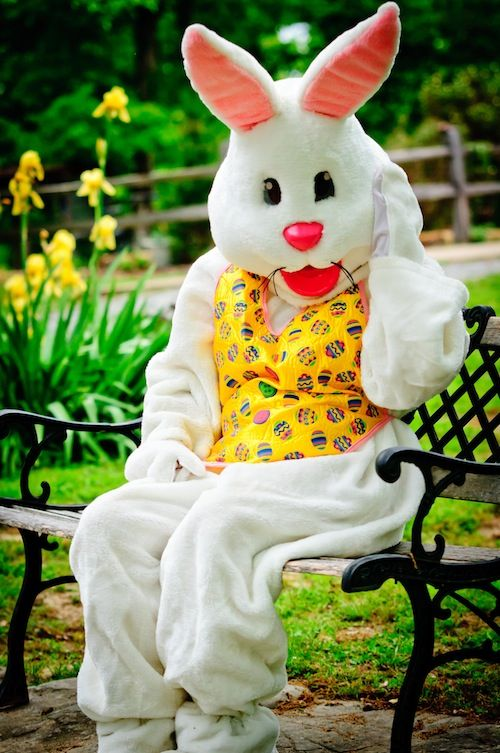 Face Painting Balloon Animals A Magic Show And Petting Zoo Oh Moms Dont Forget Picture With The Easter Bunny Jlmidland