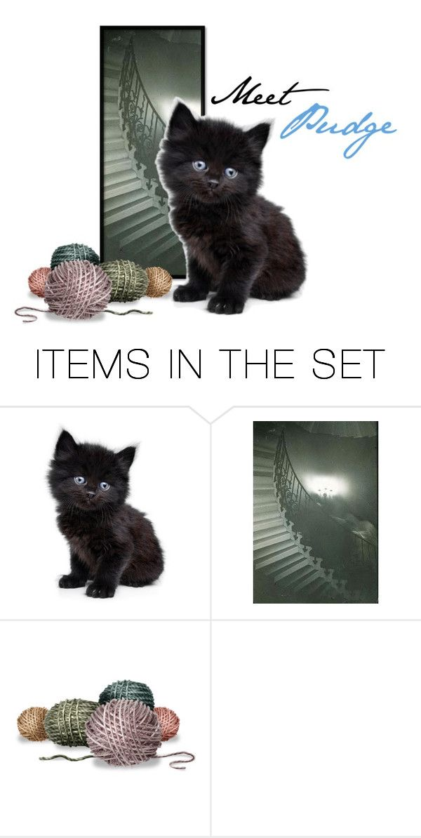 """The Terrible Manor Bed and Breakfast Kitten Teaser"" by decoder13 ❤ liked on Polyvore featuring art and foreverpudge"