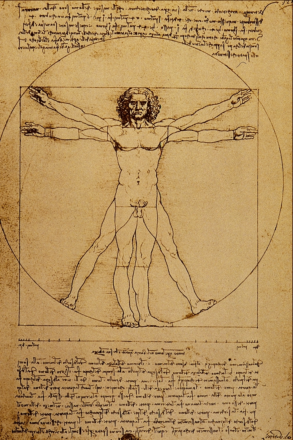 Leonardo da Vinci\'s \'Vitruvian Man\' (ca. 1487) is often used as a ...