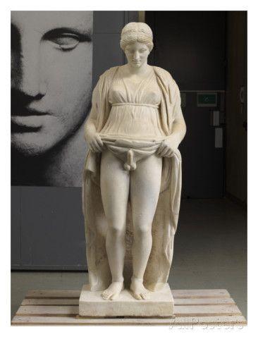 Hermaphroditism art