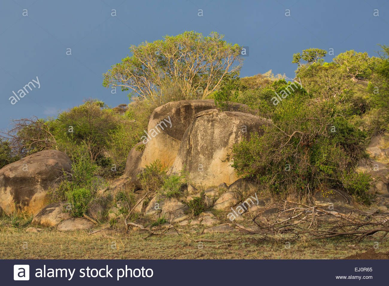 africa-mountains-rocks-cliffs-scenery-landscape-travel-savanna-serengeti-EJ0R65.jpg (1300×956)