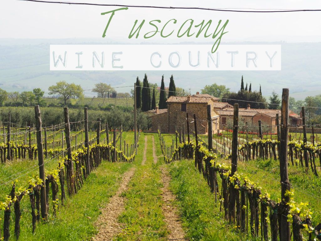 Exploring Tuscany Wine Country.   www.wemayroam.com