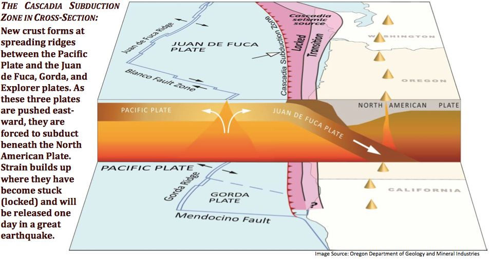 Cross Section Maps North American Plate Earthquake Pacific Northwest