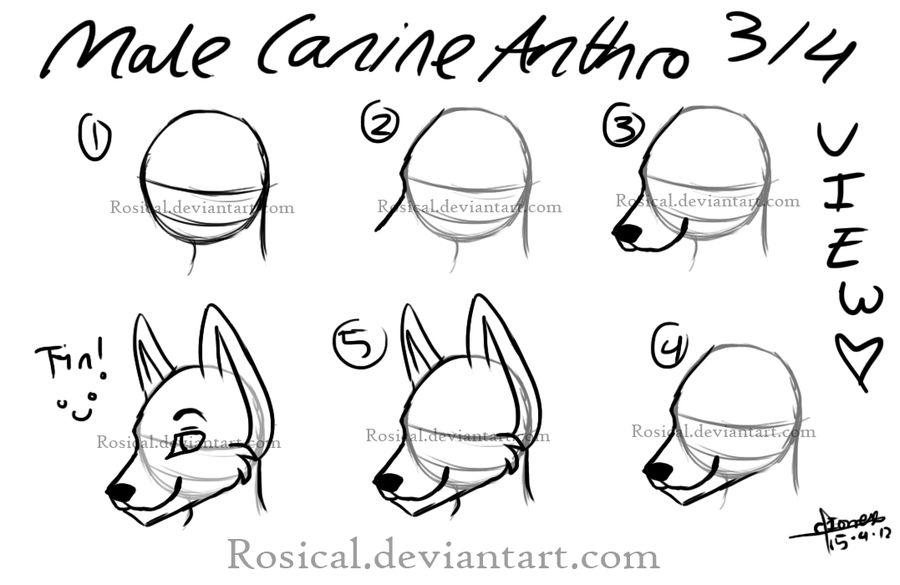 How To Draw A Furry Head Hi I M Dew Wolf Pinterest Furry