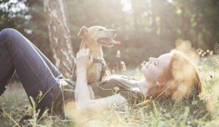 Perros como terapia contra las dolencias emocionales.
