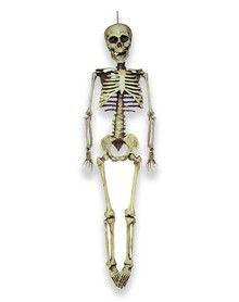 20 inch hanging skeleton decoration - Skeleton Decorations
