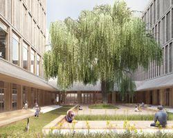 mecanoo to organize longhua art museum + library around a series of patios