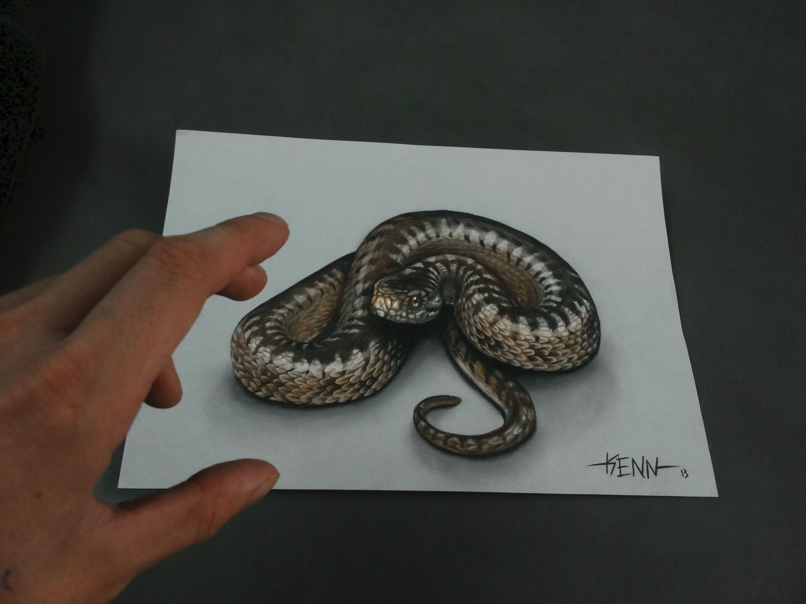 3D snake - Kenn Skogli...