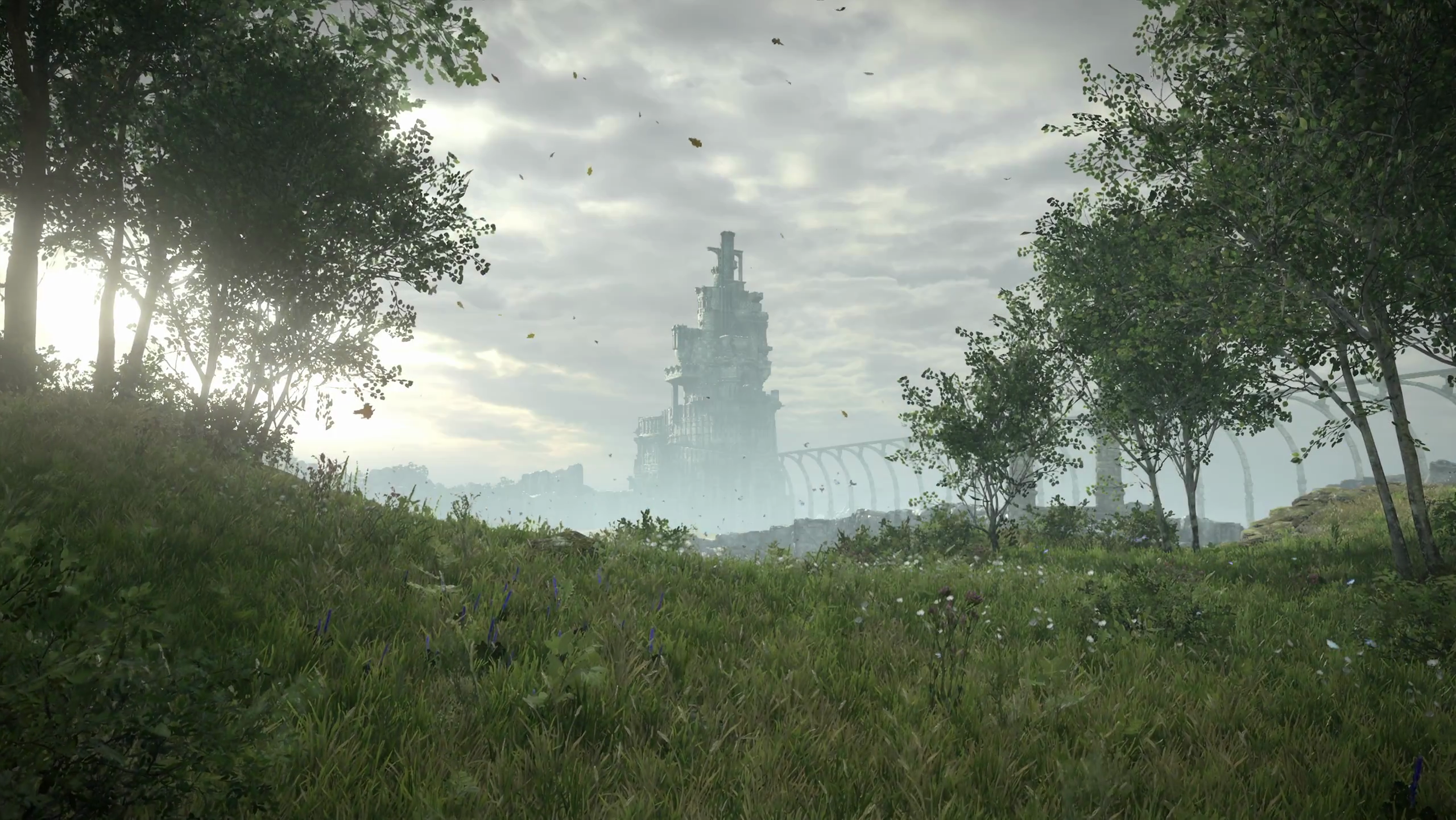 I Captured Some 4k Wallpapers Of The Ps4 Shadow Of The Colossus