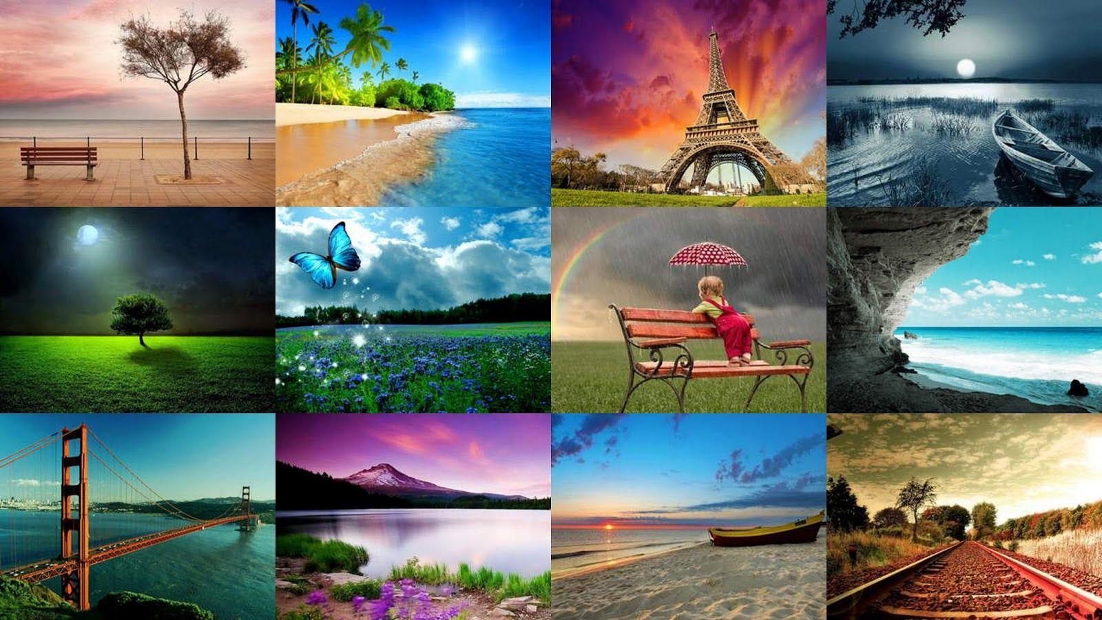 Download 320x240 Nature Wallpapers Pack Nature Wallpaper Wallpaper Painting