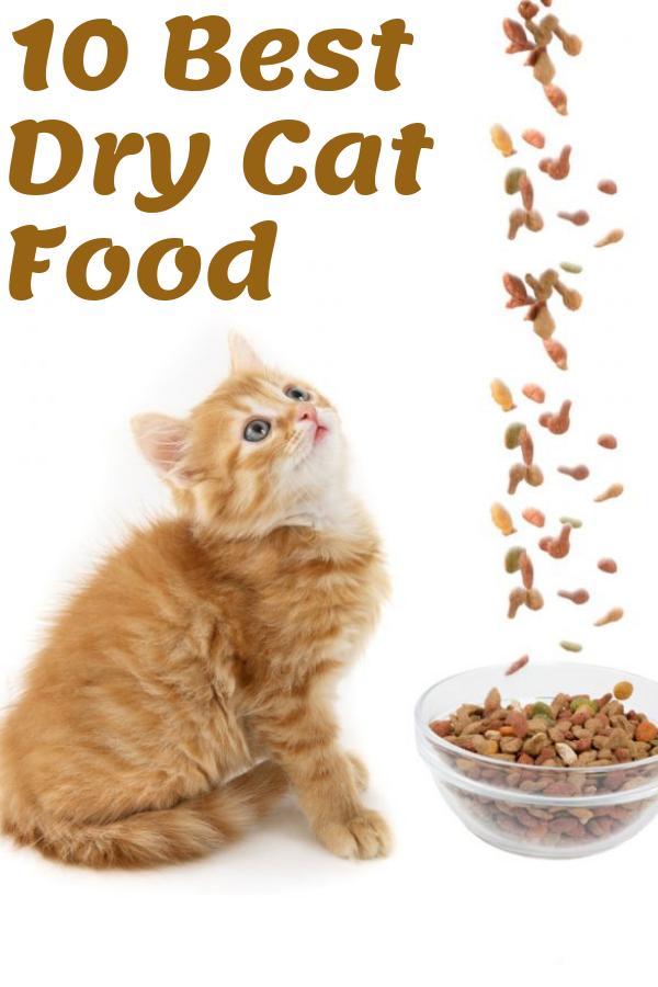 10 Best Dry Cat Food 2020 With Images Dry Cat Food Cat Food Cat Diet