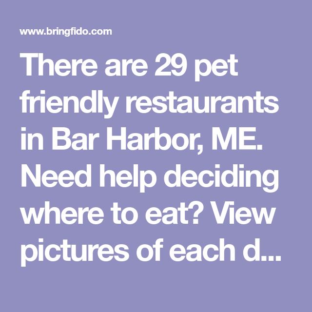There are 29 pet friendly restaurants in Bar Harbor, ME