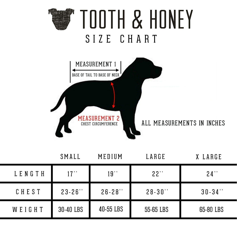 Amazon Com Tooth Honey Big Dog Pajamas One Piece