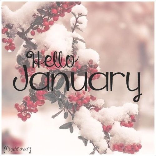 Hello January. discovered by ℓυηα мι αηgєℓ ♡