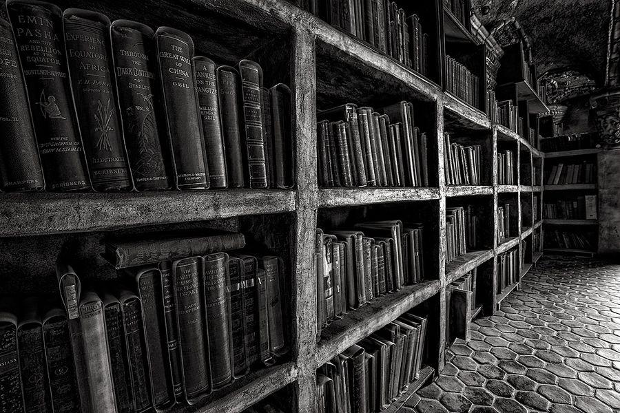 The Bookshelf Black and white effect, Bookshelves, Black