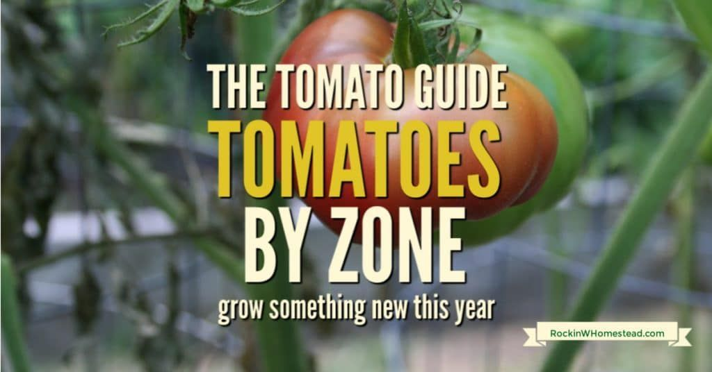 The Tomato Guide Find a Tomato for Your Garden Zone  Rockin W Homestead  Use the tomato guide to find terrific varieties to fit your specific garden zone Everyone can gro...