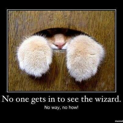 No one gets in to see the wizard.