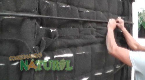 Instalaci n de sistema de riego por goteo en muro verde for Sistema de riego jardin vertical