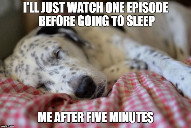 Good Night Memes Good Night Funny Funny Go To Sleep