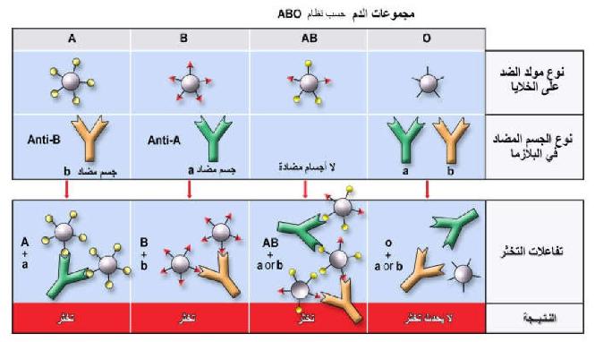 Pin By Chemistry On الحيوية In 2021