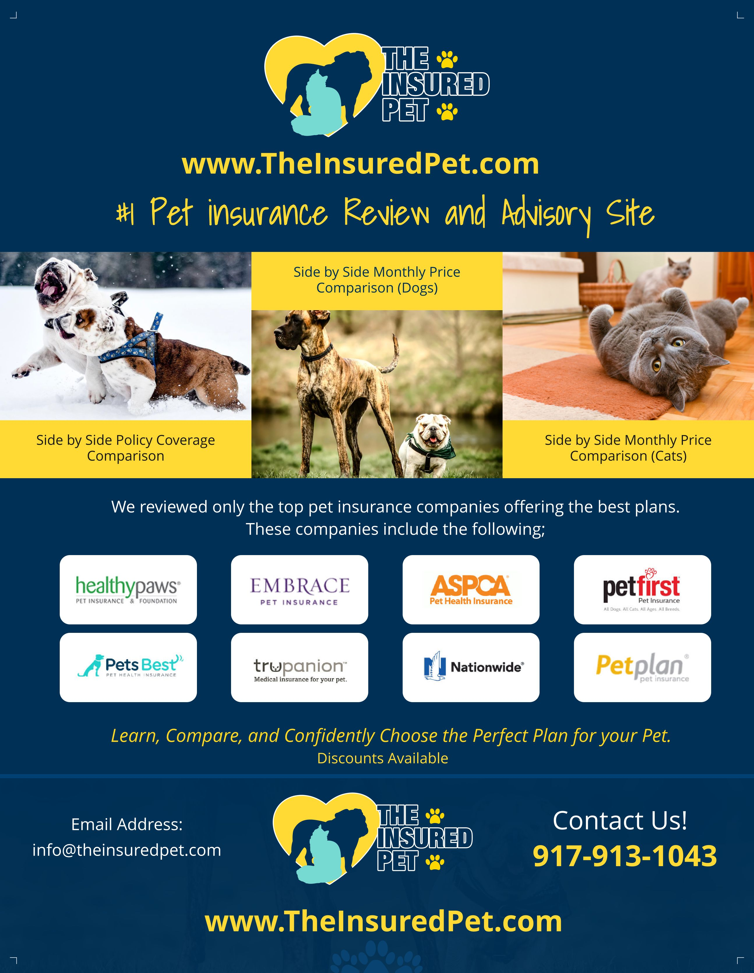 Pin by the insured pet on the insured pet pet insurance