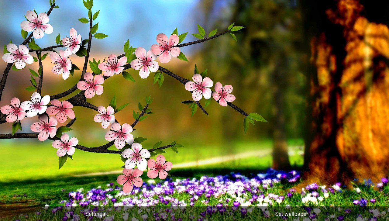 Just In Time For The Spring Season At Least On The Northern Hemisphere Another Wall In 2021 Best Flower Wallpaper Spring Flowers Wallpaper Pictures Of Spring Flowers Fantastic flower wallpaper 3d