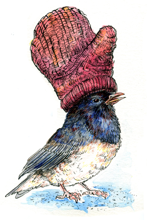Happy holidays, everyone! Peace and love to you all! (from me and the juncos)