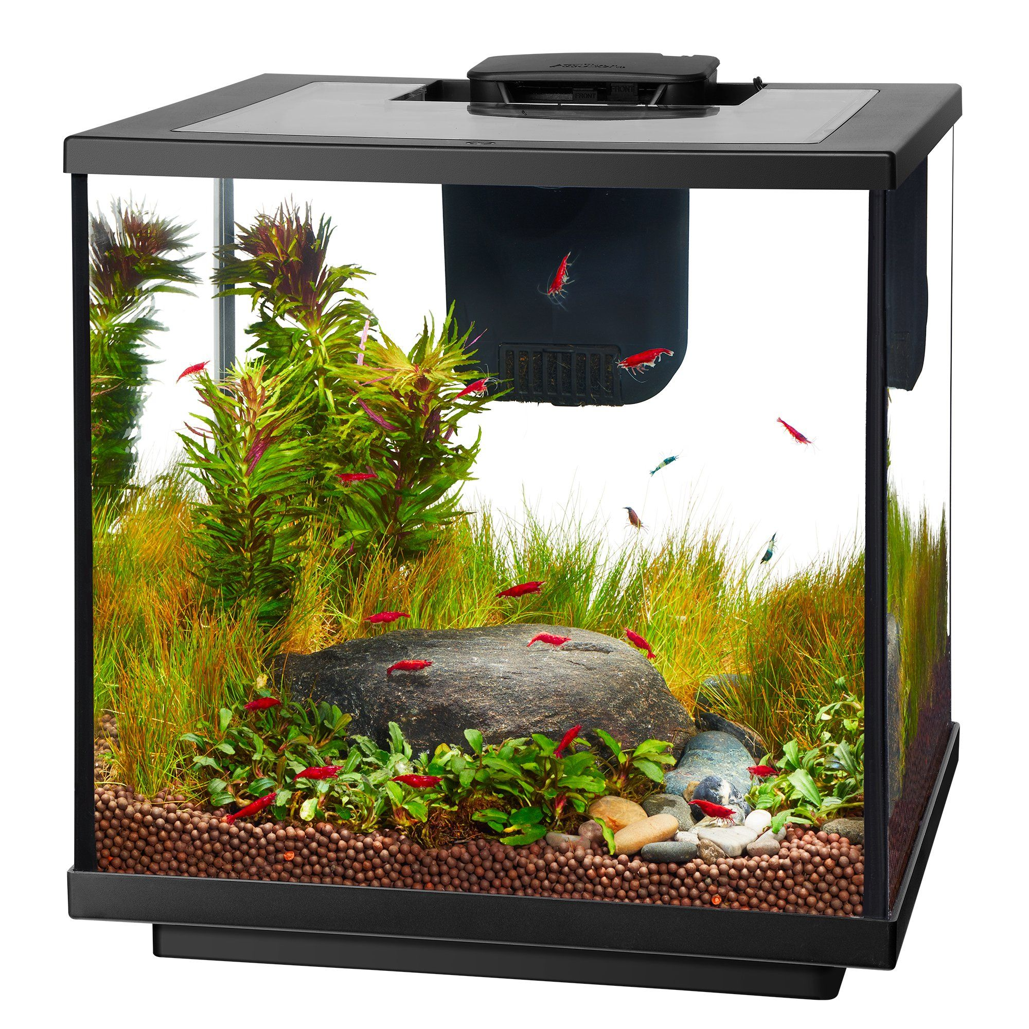 Aqueon LED 7.5 Gallon Shrimp Aquarium Kit | Petco in 2020 ...