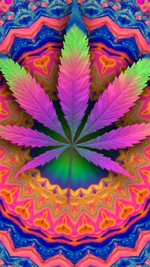Pink Haze Cannabis Wallpaper Weed Backgrounds Rainbow Live Wallpapers