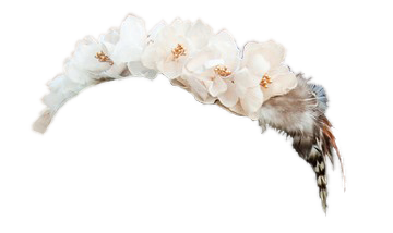 Flower And Feather Crown Flower Crown Tumblr White Flower Crown Transparent Flowers