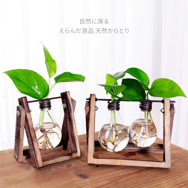 Personal home hydroponic plants container vase glass transparent small fresh desktop decoration