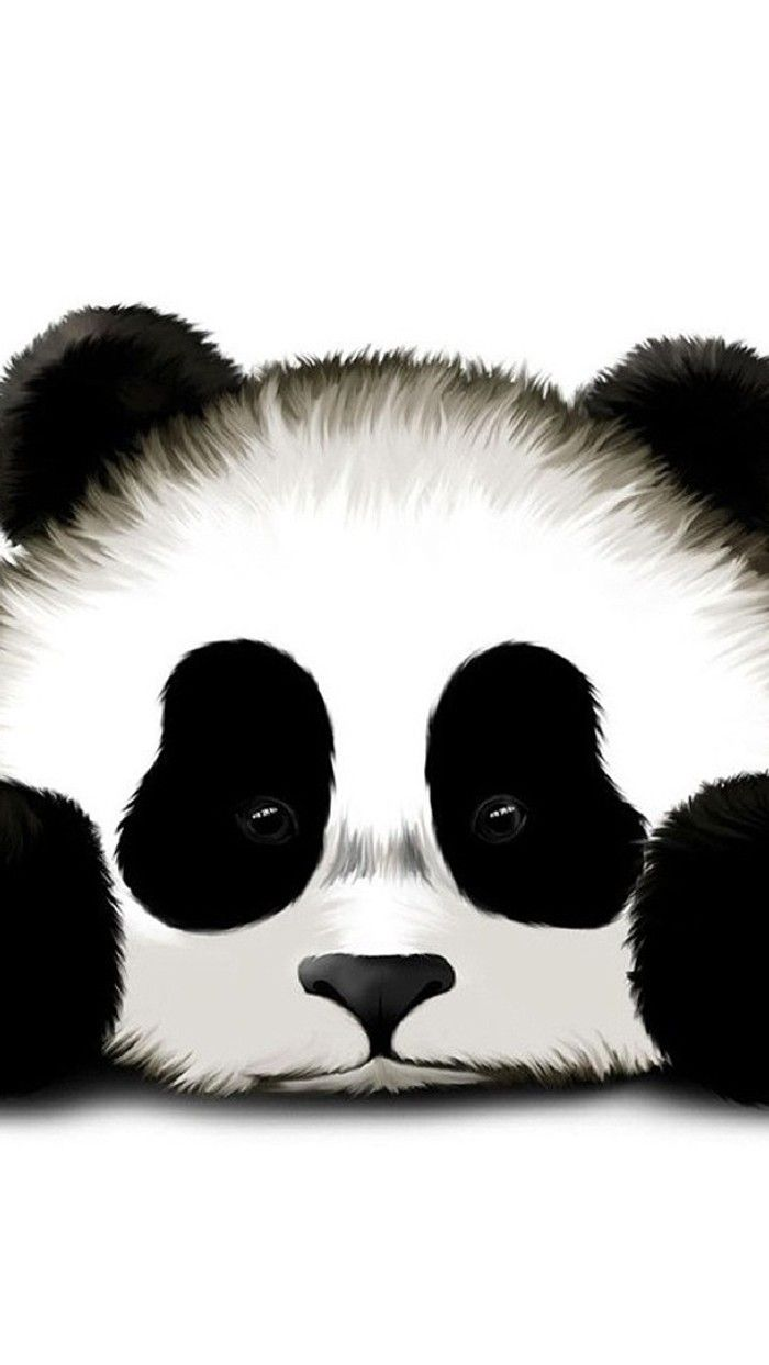Simple Wallpaper Home Screen Panda - fd1b21423736b576ec656004aafc00ea  Pictures_82317.jpg
