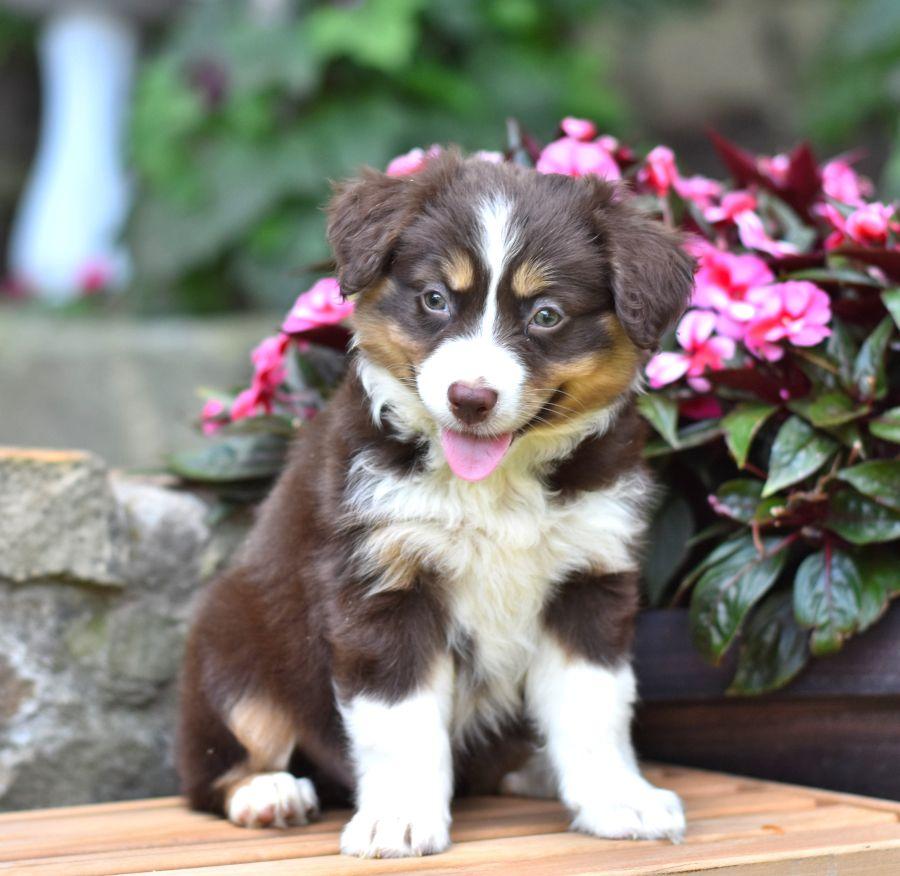Cute Cuddly Readyforadventures Sally Is An