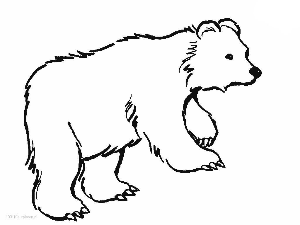 Printable Polar Bear Coloring Pages for Kids - http://www.khanumart ...
